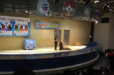141210_ishi_03.jpg